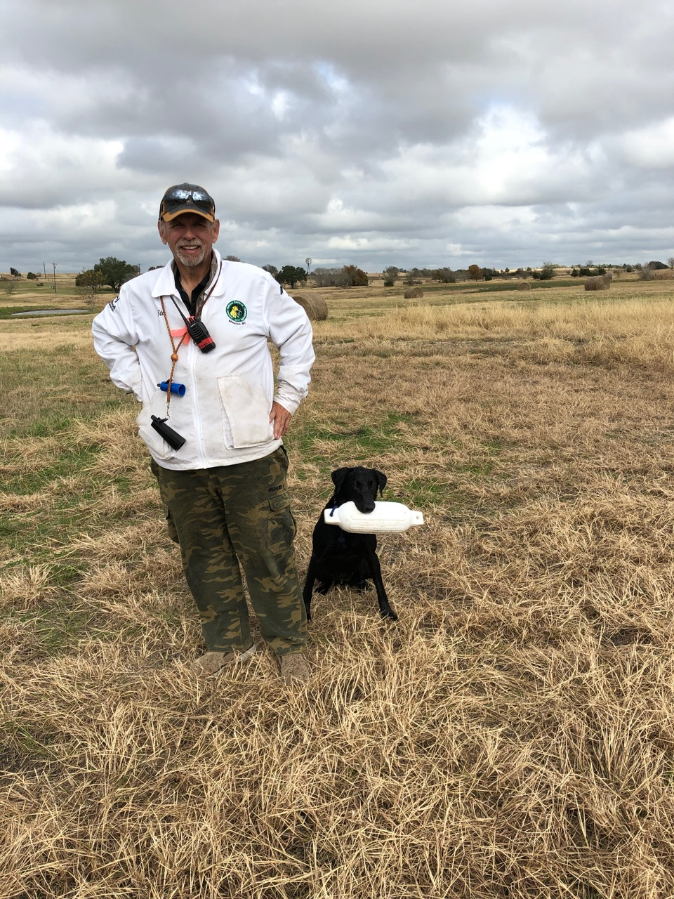 Stu Mead Club Mead Labradors standing in field with Black Labrador Retriever