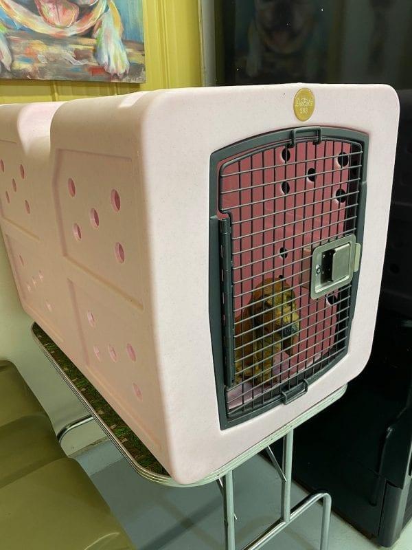 Dakota 283 dog crate large pink